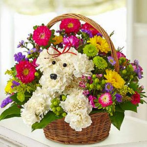 A-DOG-able in a Basket by Thomas Florist